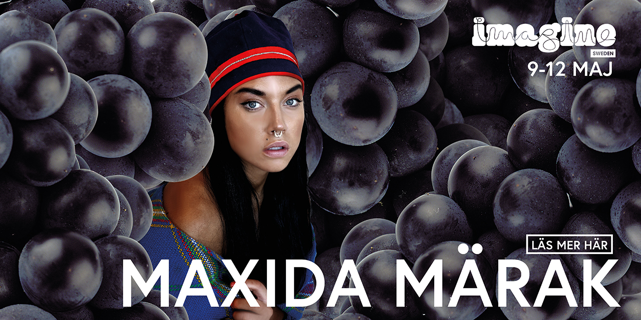 maxidabanner2018
